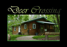 All Of Our Springwood Cabins Include: